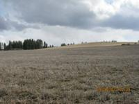 BY OWNER *****  This beautiful 20+ acres  (Two 10 acre