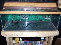 20 gallon aquarium with lid/light. Comes with......