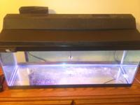 I have a 20 gallon long aquarium with full florescent