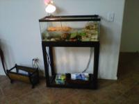 20 Gallon Aquarium With Stand. Can be used for Fish,