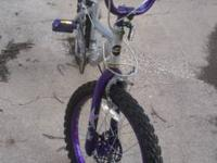 "20""Girls Bicycle - Purple, In excellent condition my"