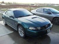 2001 Ford Mustang Sport Green Exterior Light Grey and
