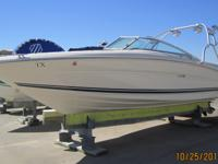 This Sea Ray 230 is the best household runabout, with