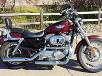 Cheap! 100th Anniversary XLH Sportster 883 Hugger For