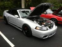 03 Steeda Svt Cobra Convertible This is truly one of