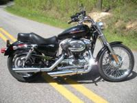 SHARP!!! 2004 Harley Davidson XL1200 CUSTOM. Shiny