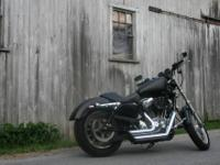 I have a 204 Harley-Davidson XL883 Sportster with many