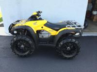 GREAT ATV !  ADULT DRIVEN - ALL WAYS STORED IN GARAGE.
