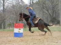 ~PRICE REDUCED~2005 AQHA bay mare.This mare stands to