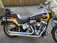 I have a 2005 Harley Davidson FXSTD that needs to be