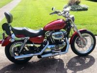 2006 Harley Davidson Sportster 1200 Low. Custom-made