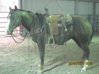 Chick is a 2006 model gelding broke on the ranch has