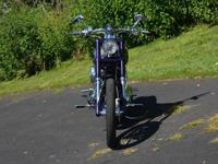 2007 HARLEY DAVIDSON SCREAMIN' EAGLE DYNA FXDSETwilight