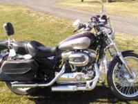 2007 Harley Davidson XL1200C Sportster Custom. 2007