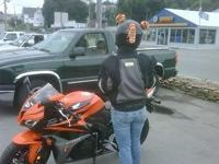 2008 CBR 600rr mi 8,xxx Orange and black. Female adult