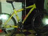 This is a 2009 Specialized Rockhopper that has been