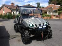 This is a 2008 Yamaha Rhino 700 FI Special Edition