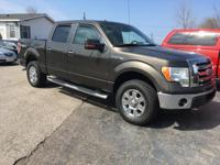 Options:  2009 Ford F-150 Xlt|Brown|Crew