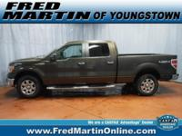 CARFAX One-Owner. Clean CARFAX. Brown 2009 Ford F-150