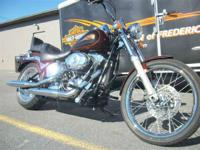 2009 Harley-Davidson Softail Custom located at our