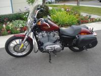 2009 H-D Sportster XL883L, Red Hot Sunglo metallic and