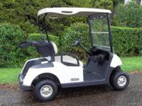 2009 EZGO RXV Electric Golf Cart  Top of the Line