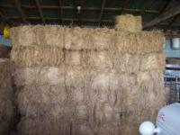 108 bales of good brome hay Bales weigh about 70