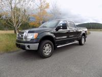 Options:  2010 Ford F-150 4Wd Supercrew 145 Lariat|This