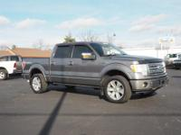 Options:  2010 Ford F-150 Platinum|4X4 Platinum 4Dr
