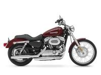 An easy ride loaded with chrome custom style and the