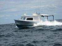 2010 Sintes Commercial Sportfish Please contact the