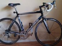 I bought this Trek 2.1 two summers ago and have put