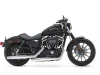 From the authentic Harley 883 cc engine to the chopped