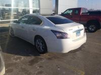 Recent Arrival! Maxima 3.5 SV Winter Frost Pearl w/