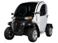 Specialty Vehicles Electric Vehicles 6880 PSN . 2013