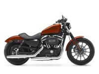 Bikes Sportster 7881 PSN. For a combination of style