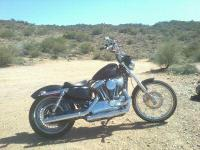 Bikes Sportster 7705 PSN. the Seventy-Two screams