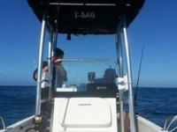 17', 8 month old center console fishing boat, great for