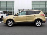 2014 Ford Escape SE 4 Wheel Drive 1.6L Eco-Boost!!