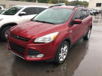 You can find this 2014 Ford Escape SE and many others