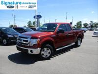 Options:  2014 Ford F-150 Xlt|Sunset Metallic|Steel