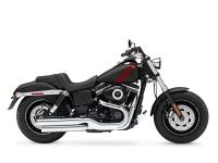 For the custom-made design you desire the Fat Bob model