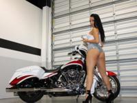 2014 Harley Street Glide Special FLHXS Custom Painted