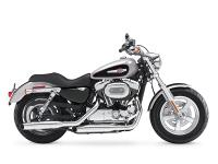 2015 Harley-Davidson 1200 Custom Sharp color on this