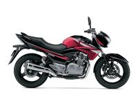 2015 Suzuki GW250Z BRAND NEW 2015!! Financing is
