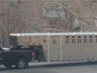 2016 Wilson trailer for sale in Portage, UT Breeders