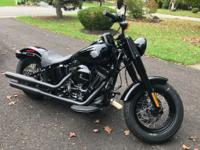 Brand spanking new Harley Softail Slim S. I drove this