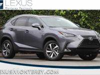 Gray 2018 Lexus NX 300 Base AWD 6-Speed Automatic 2.0L