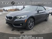 Recent Arrival!  Mineral Gray Metallic 2019 BMW 2