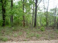 3 adjoing lake lots in nice subd near comunity park and